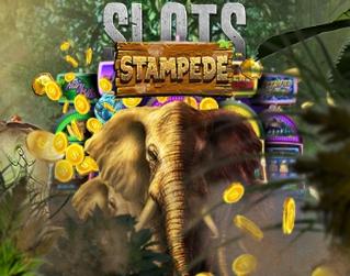 game-slots-stampede