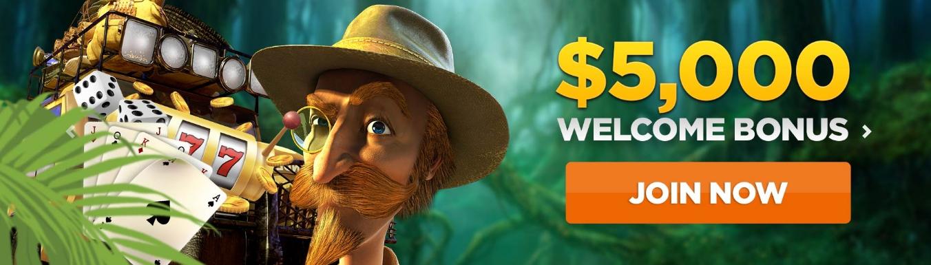wild-casino-welcome-bonus
